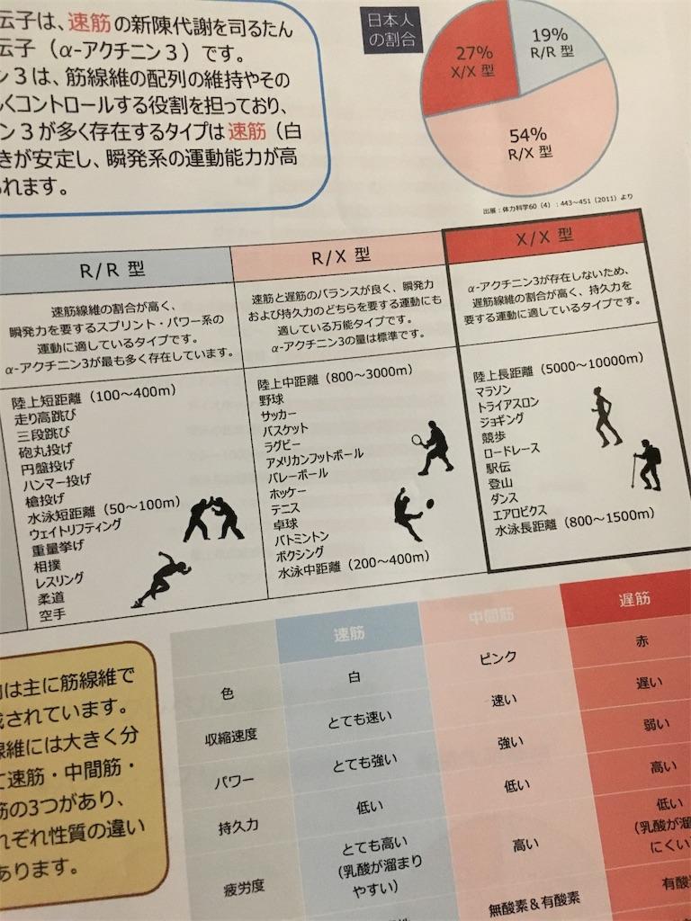 f:id:kotobuki_matsu:20190107234131j:image