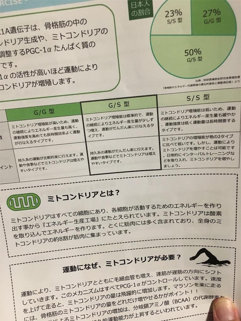 f:id:kotobuki_matsu:20190108001048j:image