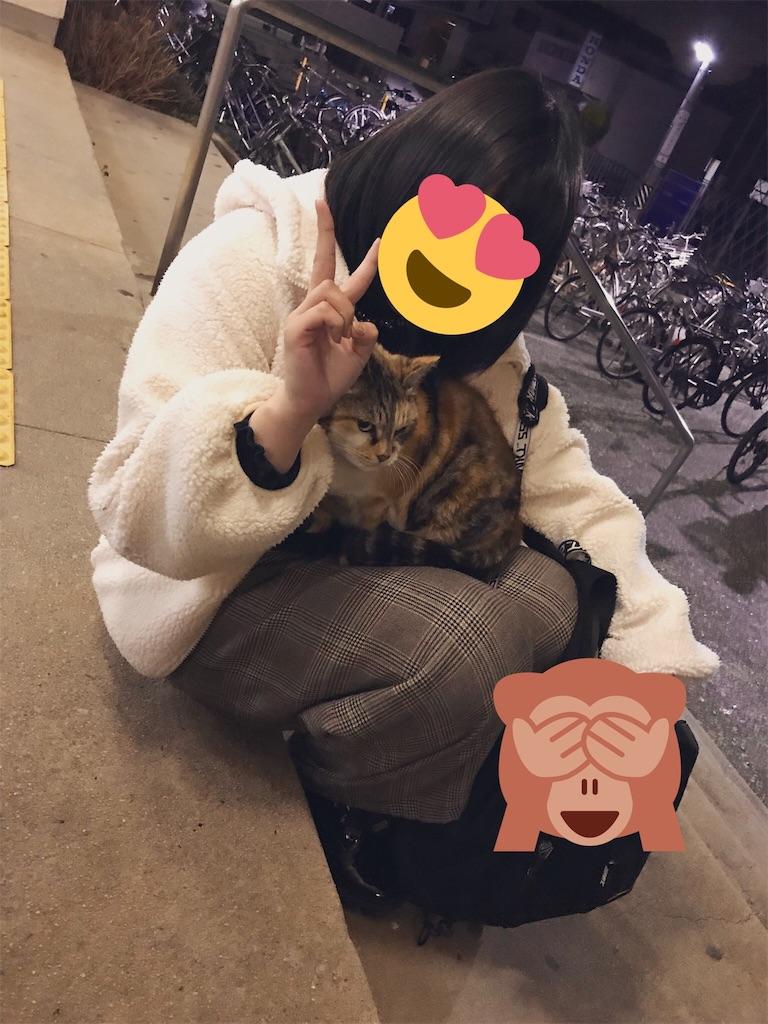 f:id:kotohadayo:20190228121920j:image