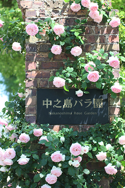f:id:kotokoto-photo:20170519225627j:plain