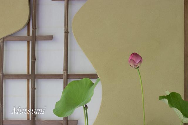 f:id:kotokoto-photo:20170803223935j:plain