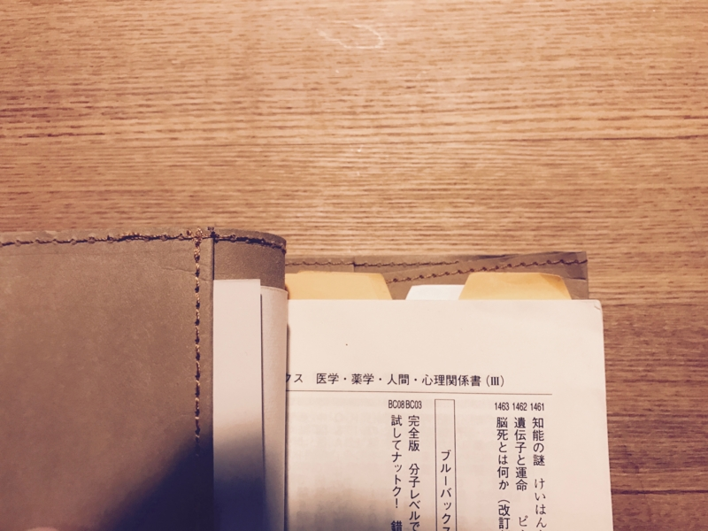 f:id:kotokunohate:20170112093817j:plain