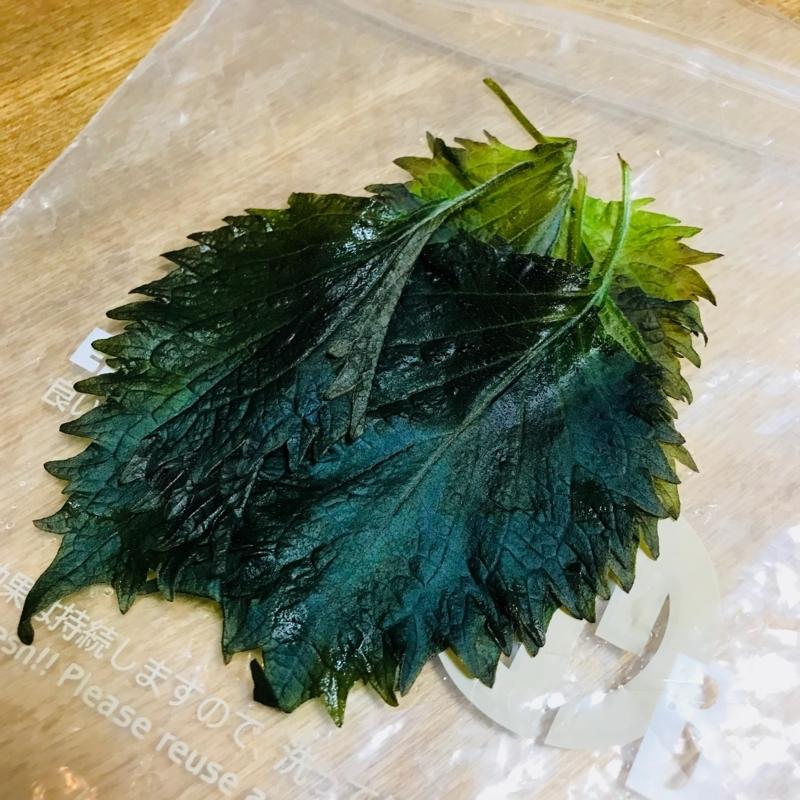 f:id:kotokunohate:20180211124029j:plain