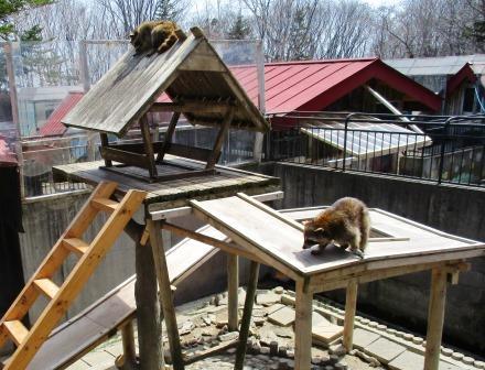 弥生動物公園