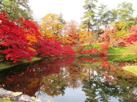 弘前城菊と紅葉まつり中止