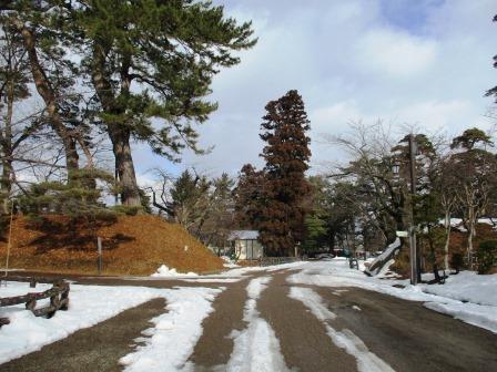 冬の観光・弘前・弘前城雪燈籠まつり