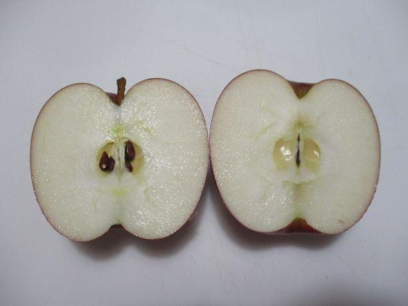 リンゴの効用