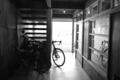 京都新聞写真コンテスト 光の先