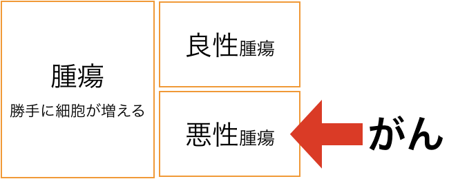 f:id:kotonohanohako30:20180623224338p:plain