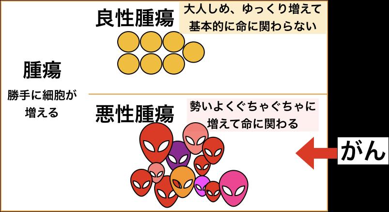f:id:kotonohanohako30:20180623231404p:plain