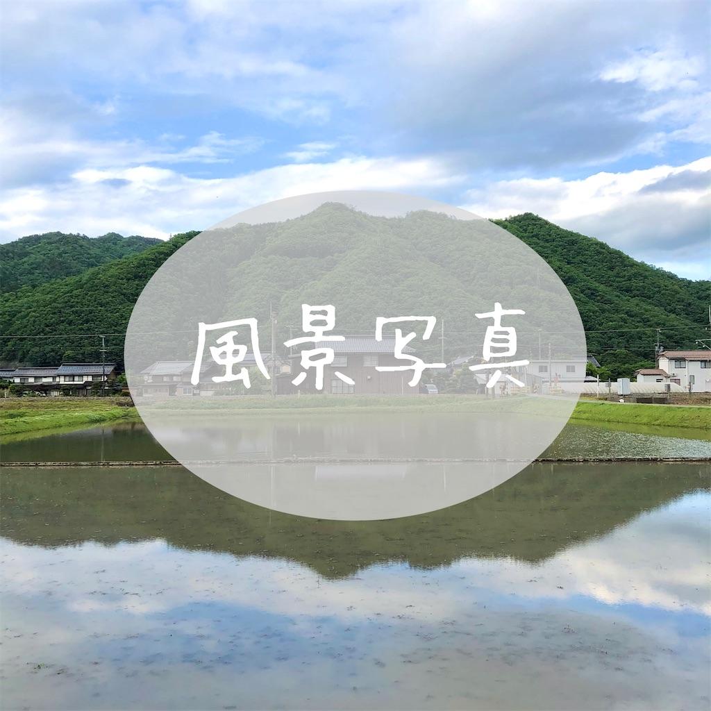 f:id:kotori0927:20210514123656j:image
