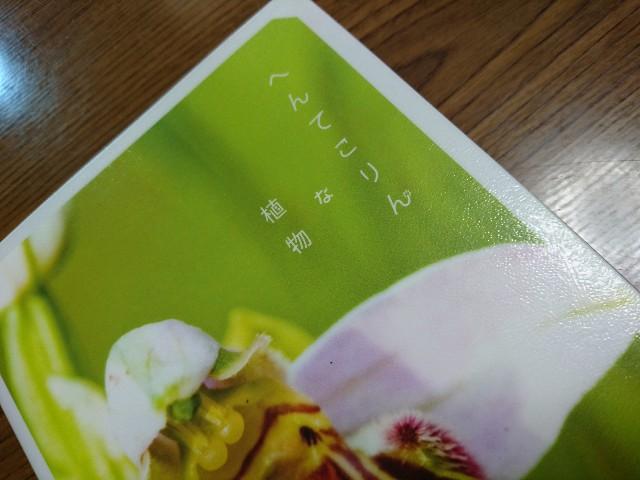f:id:kotori11:20180419203640j:image