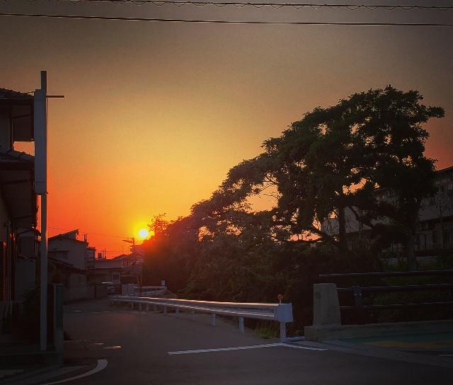 f:id:kotori11:20190523224850j:image
