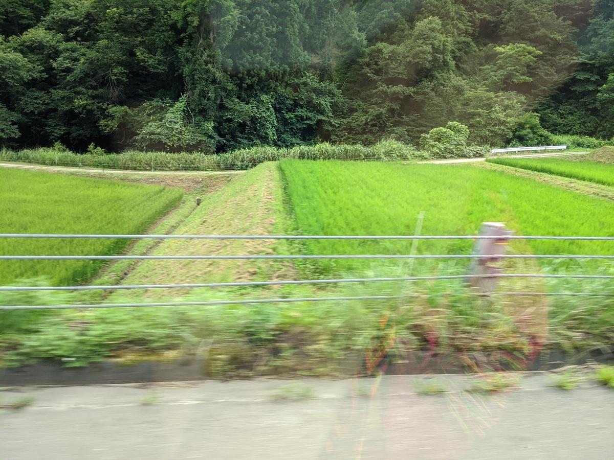 f:id:kotori325:20200813191700j:plain