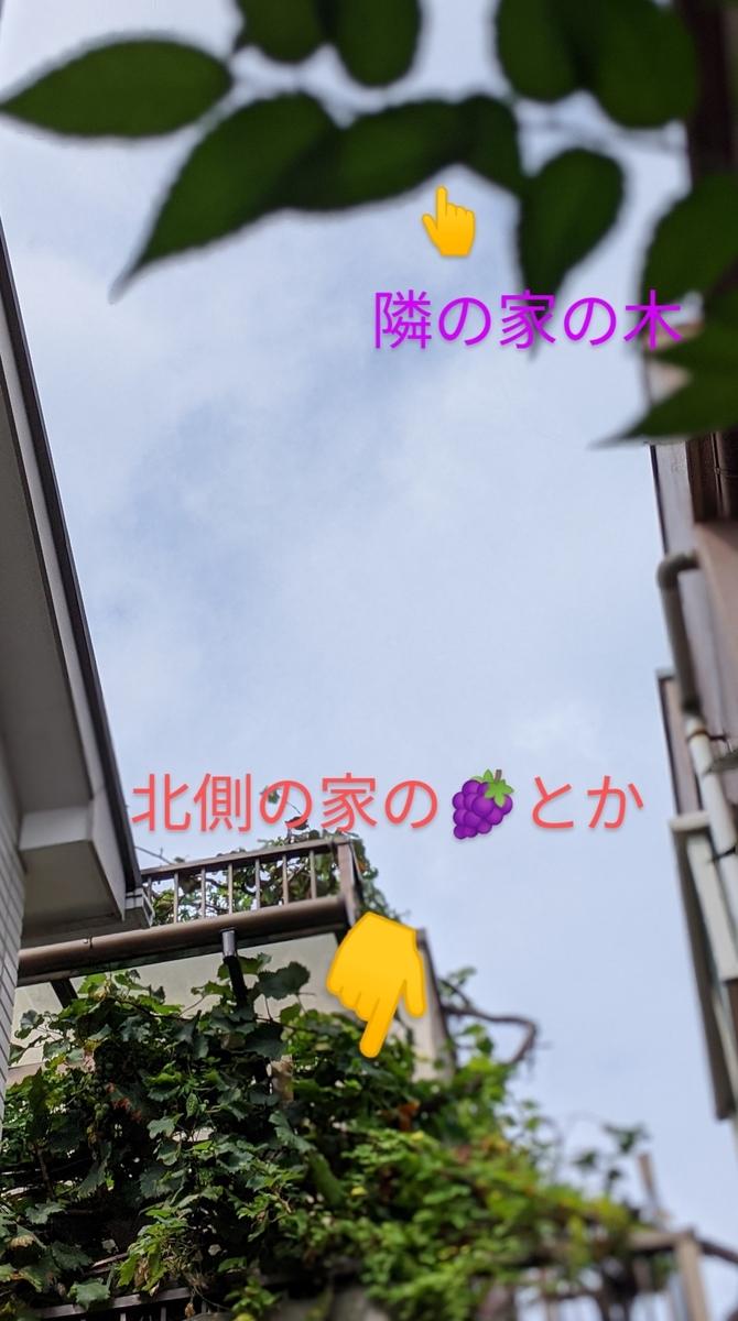 f:id:kotori325:20200921145620j:plain