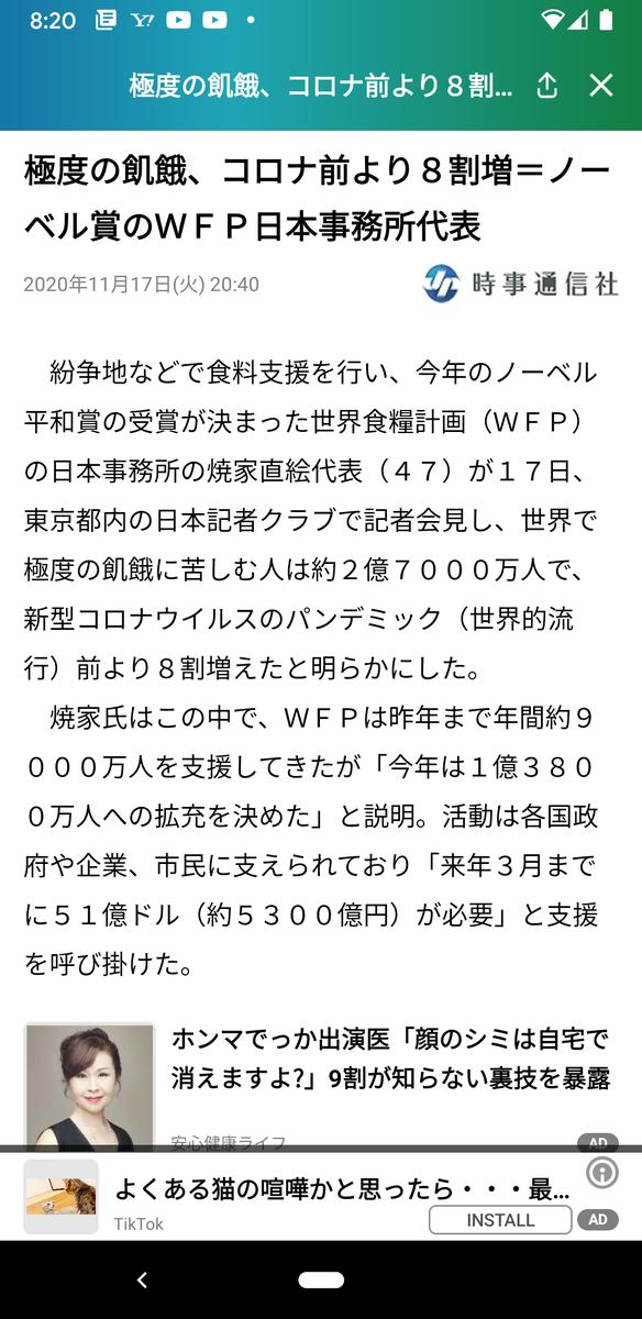 f:id:kotori325:20201118181012p:plain