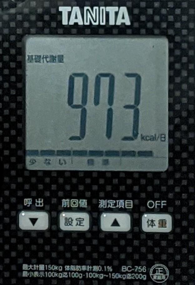 f:id:kotori325:20201205211820j:plain