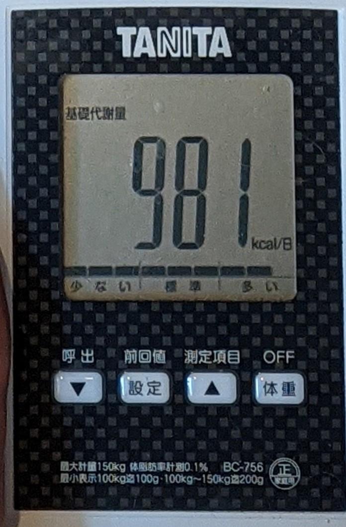 f:id:kotori325:20201222163105j:plain