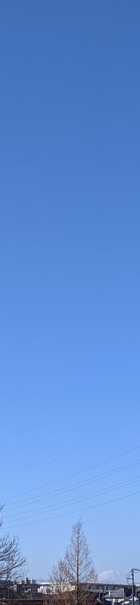 f:id:kotori325:20210114164131j:plain
