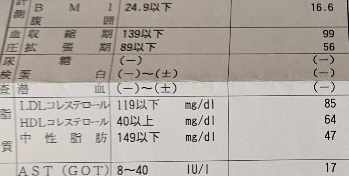 f:id:kotori325:20210224210111j:plain
