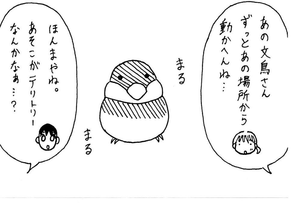 f:id:kotorikorokoro:20160624182630j:plain