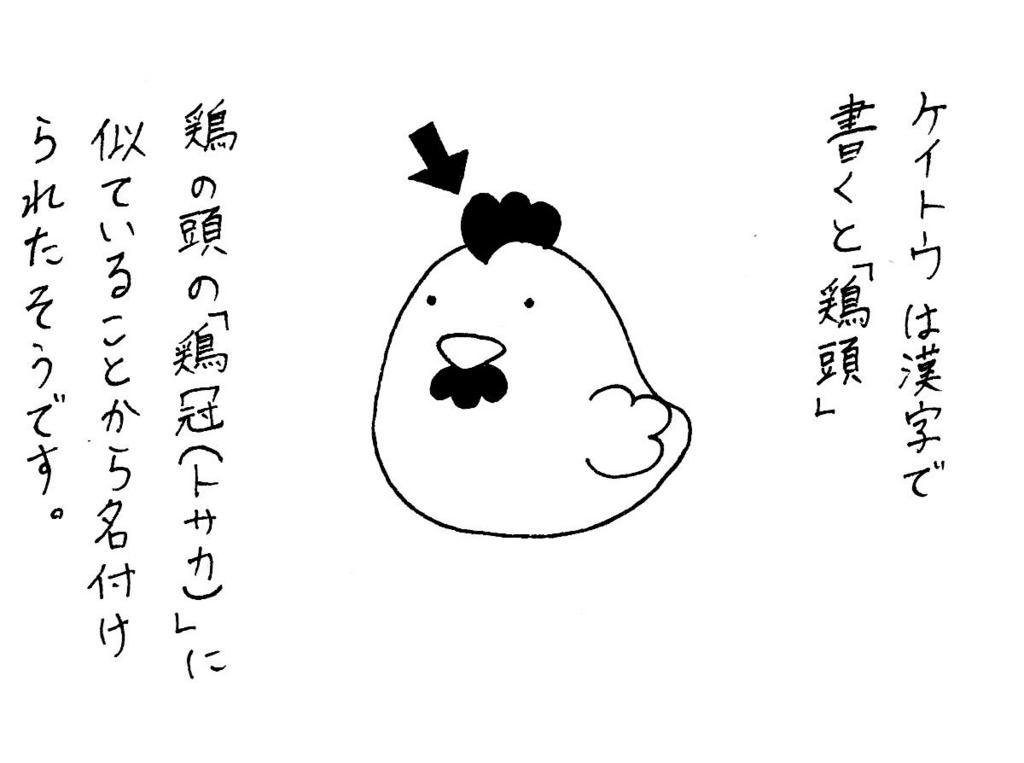 f:id:kotorikorokoro:20160905192934j:plain