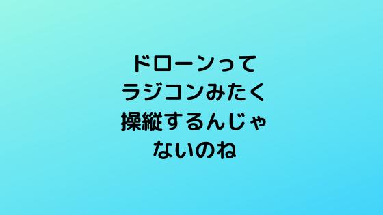 f:id:kotorinokosodate:20190721222453p:plain