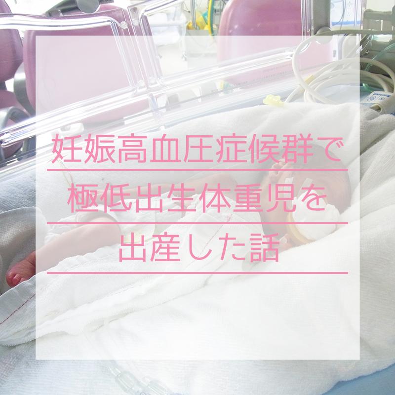 f:id:kotoritamago:20200613051959j:plain