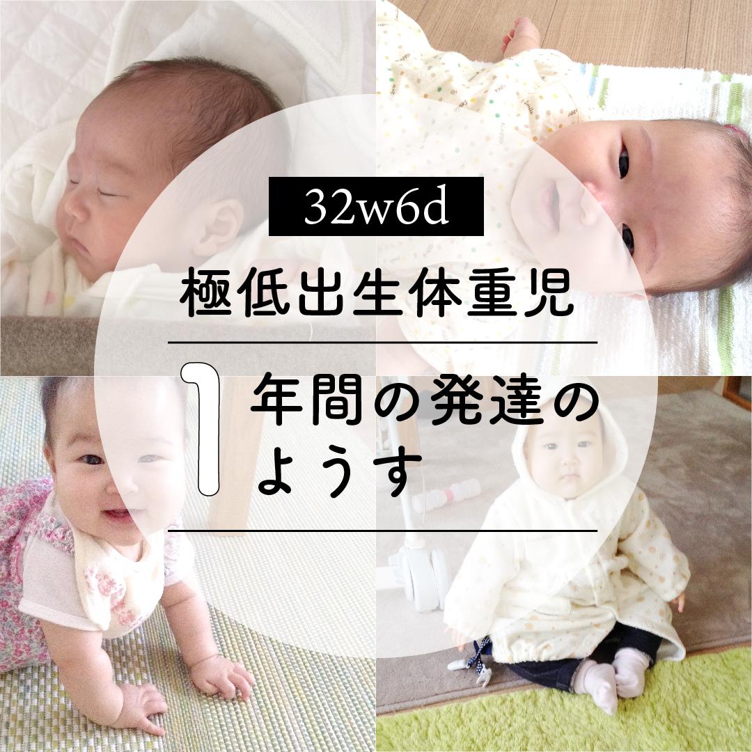 f:id:kotoritamago:20210222061129j:plain