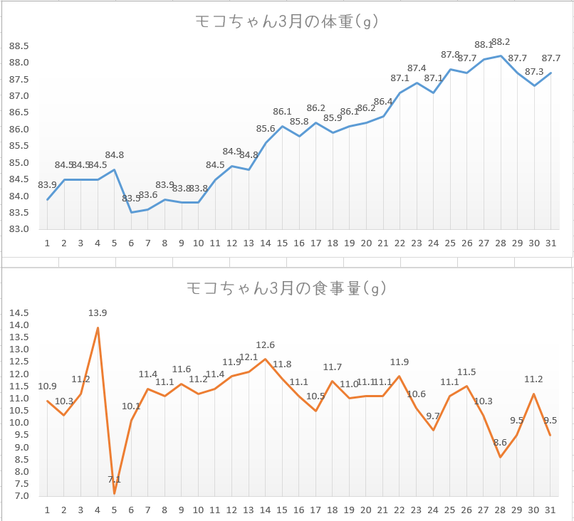f:id:kotoritonoseikatsu:20200403105532p:plain