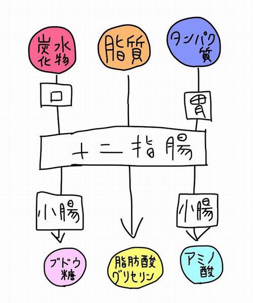 f:id:kotosanagi:20151016174314j:plain