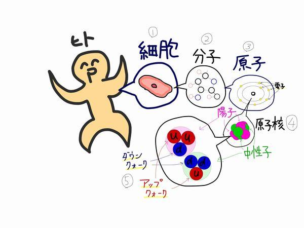 f:id:kotosanagi:20151210044838j:plain