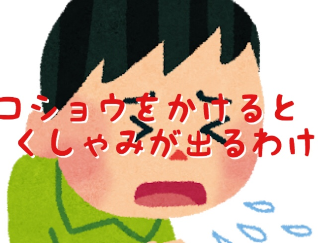 f:id:kotosanagi:20181223102759j:plain