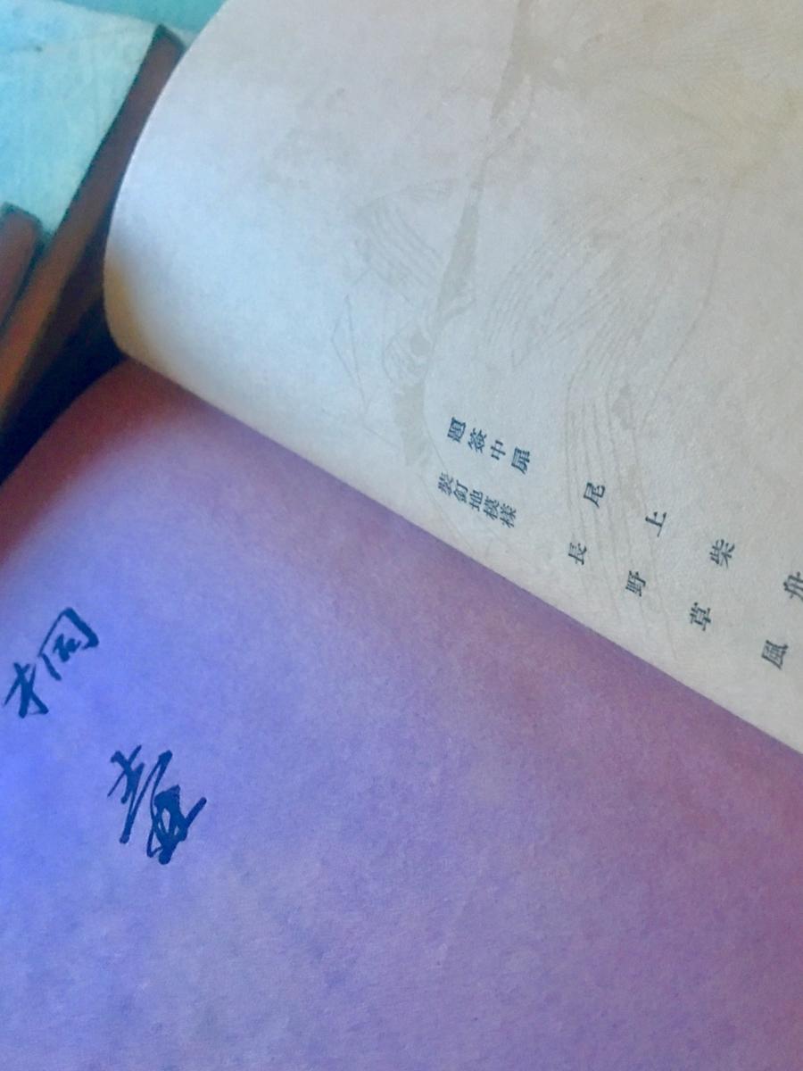 f:id:kototamakotonomama:20190621192549j:plain