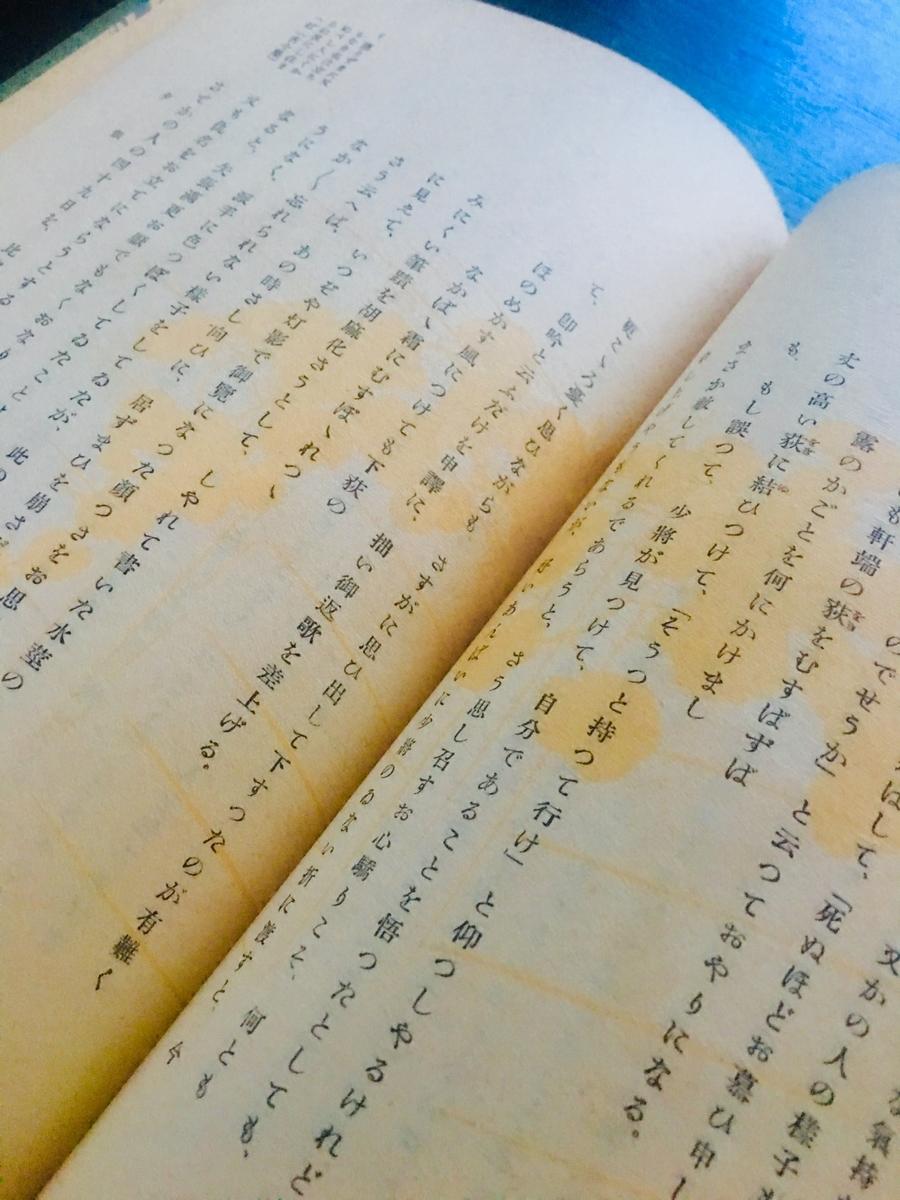 f:id:kototamakotonomama:20190621192645j:plain