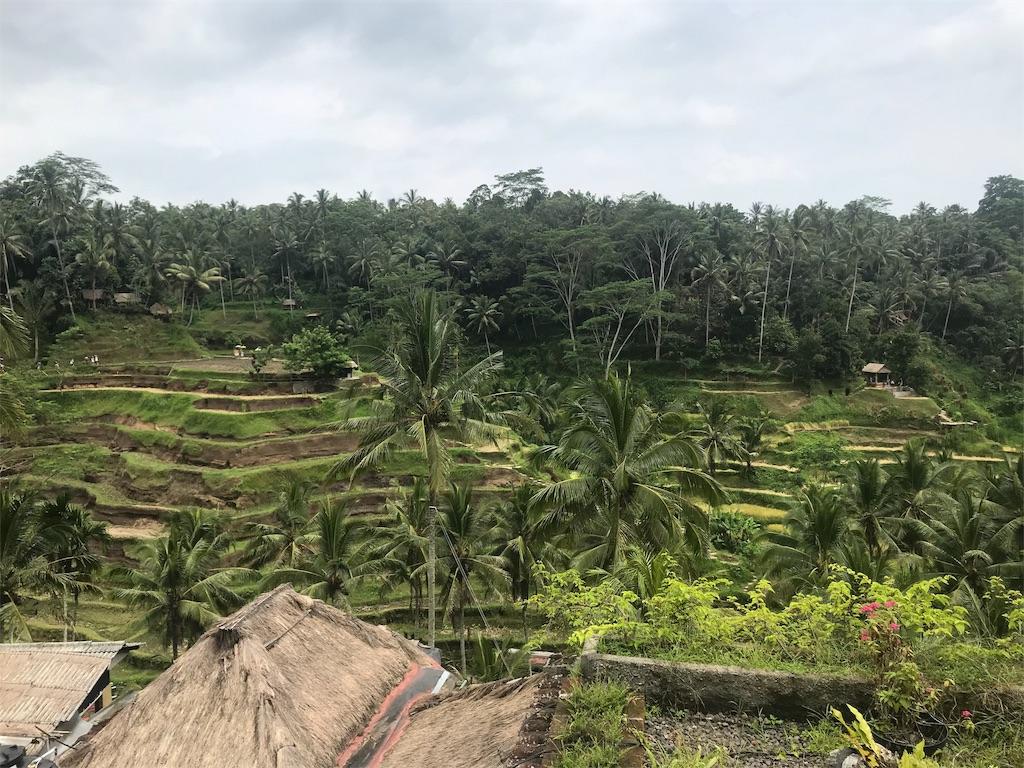 バリ島景色
