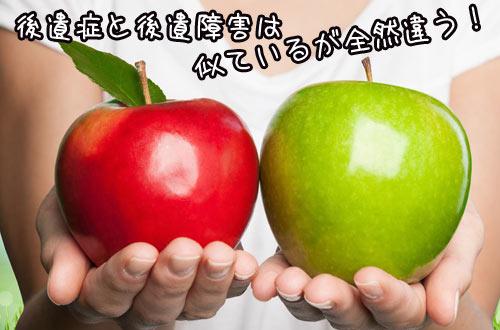 f:id:kotsujiko:20170117150309j:plain