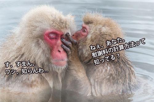 f:id:kotsujiko:20170125143856j:plain