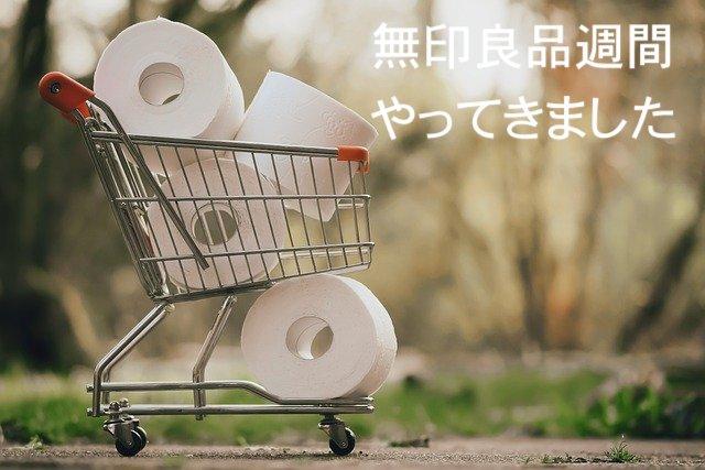 f:id:kotsukotsu_tocchi:20210330155532j:plain