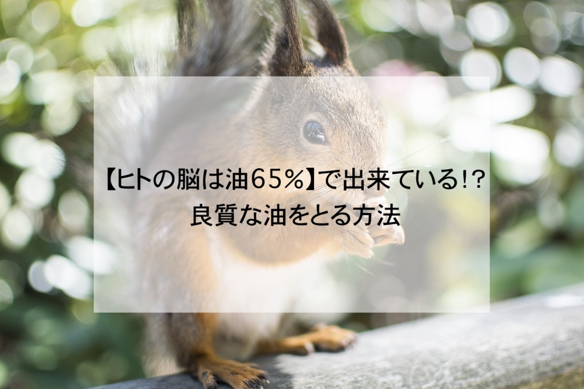 f:id:kotsukotsu_tocchi:20210517203211j:plain