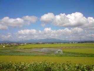 f:id:kotsunao:20090829125005j:image