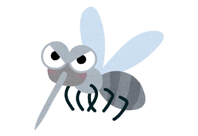 夢占い 蚊の夢