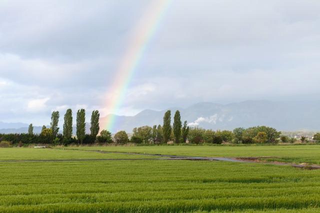 夢占い 虹の夢