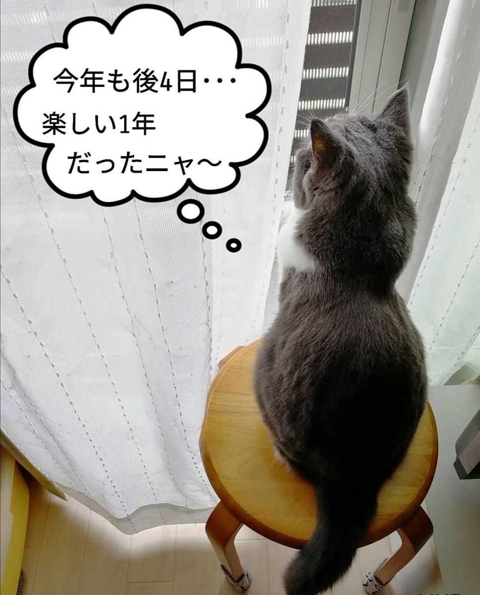 f:id:kotubutubu3253:20191227201106j:plain