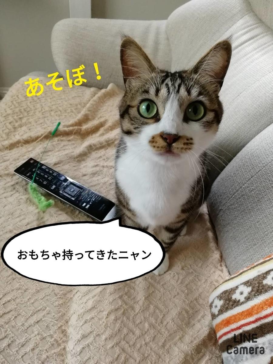 f:id:kotubutubu3253:20200412203107j:plain