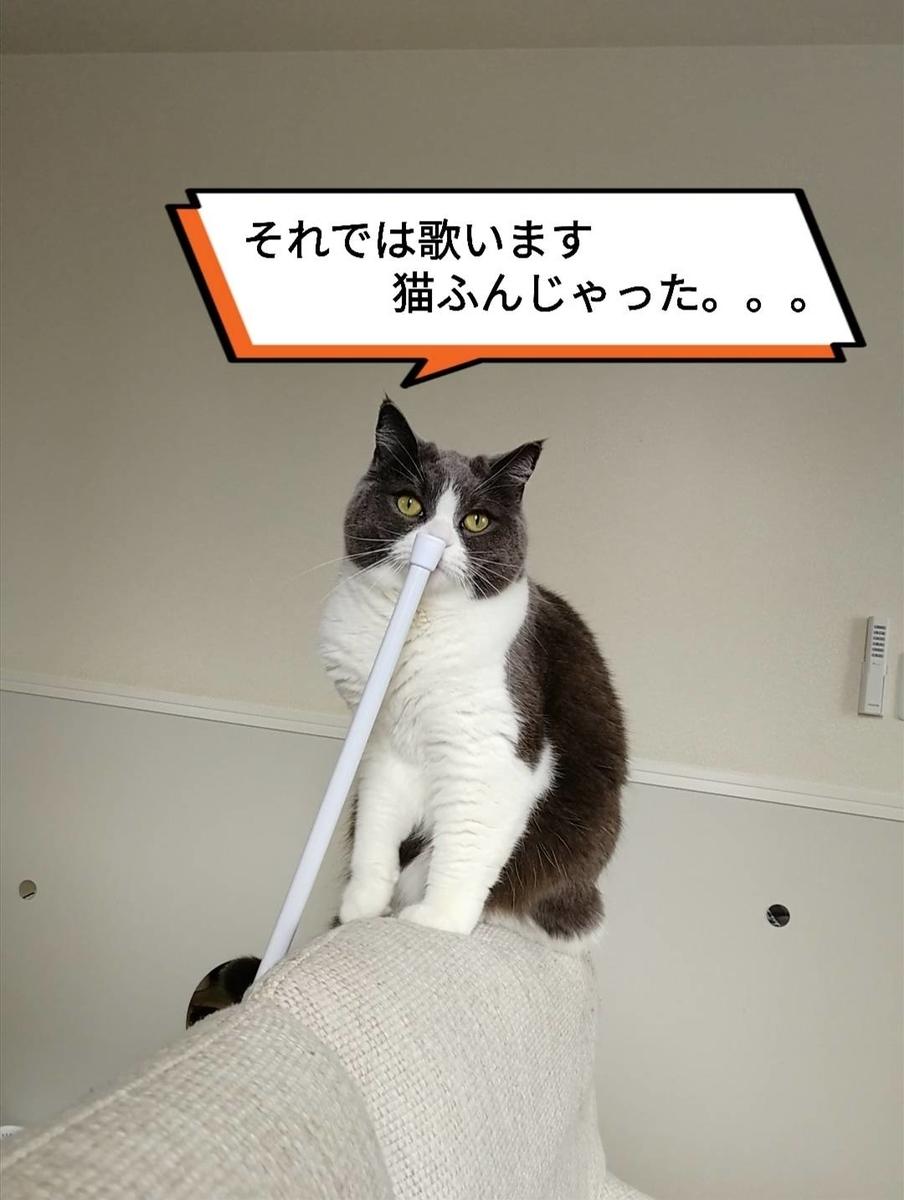 f:id:kotubutubu3253:20200511070156j:plain