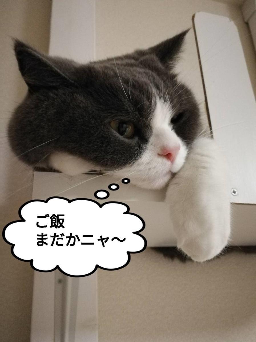 f:id:kotubutubu3253:20200710163739j:plain