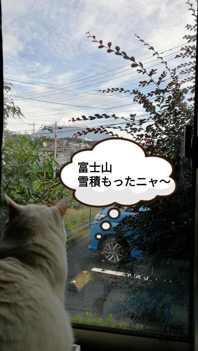 f:id:kotubutubu3253:20201020212333j:plain