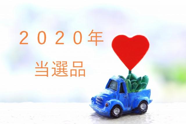 f:id:kotukotu-day:20200830132830j:plain