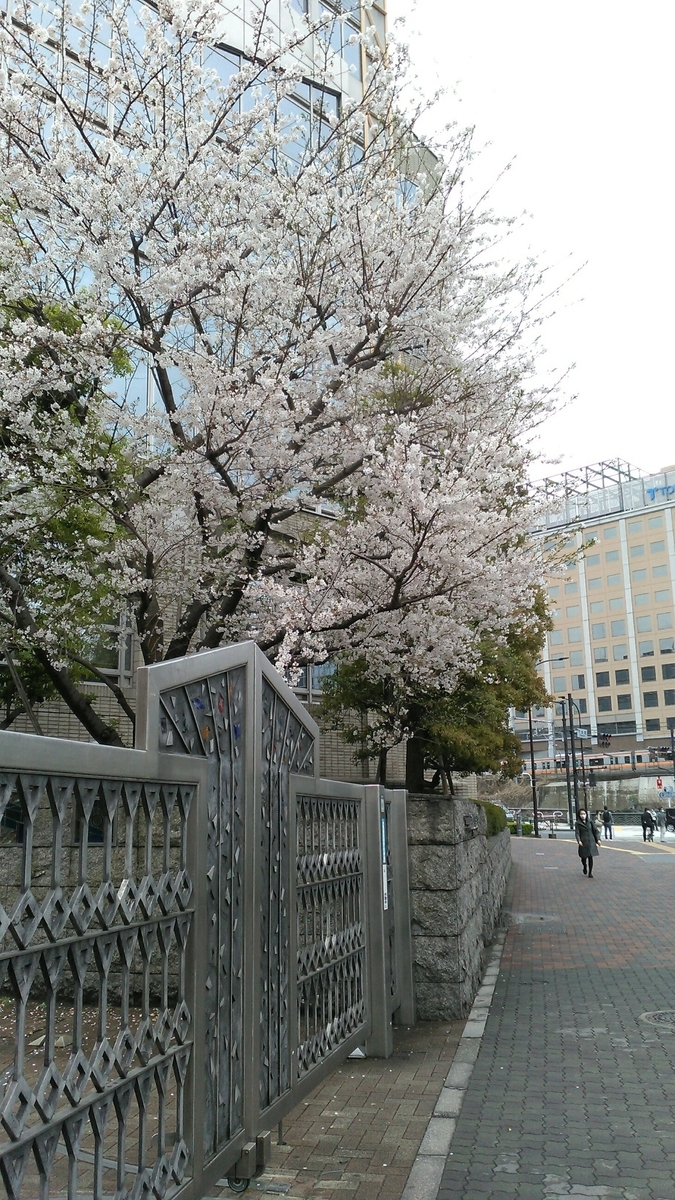f:id:kotuzumiokamoto:20210329090620j:plain